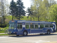 Photo of Chicago's Pace Suburban Bus