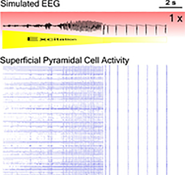 Illustration of simulated EEG and superficial pyramidal cell activity
