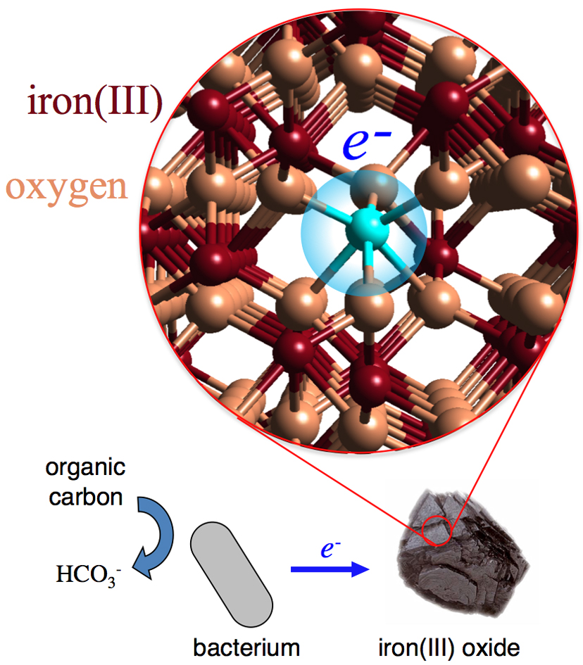 The reduction of iron(III) oxide minerals is an important component of iron cycling in the subsurface. For example, certain bacteria couple carbon oxidation and iron reduction to obtain energy from growth.