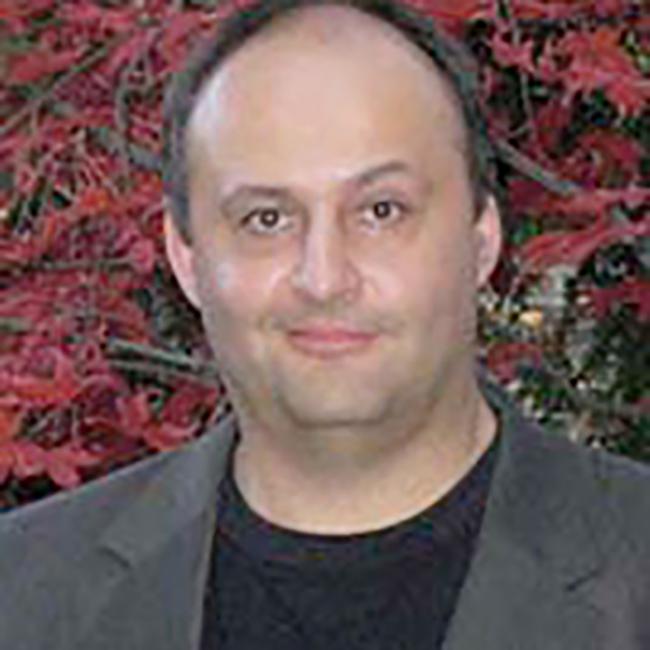 Mihai Anitescu