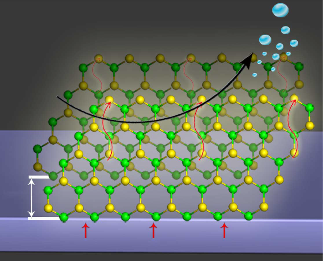 A schematic representation of the edge-terminated MoS2 on glassy carbon electrode