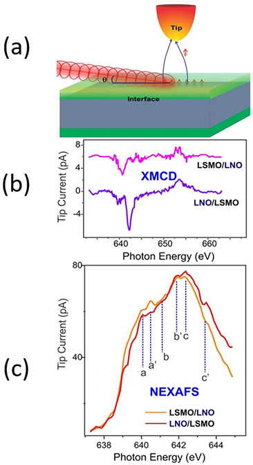 Fig. (a) SX-STM  experimental setup (b) STM-XMCD and (c) STM-NEXAFS  spectra of LNO/LSMO and LSMO/LNO interfaces (Image by Argonne National Laboratory.)