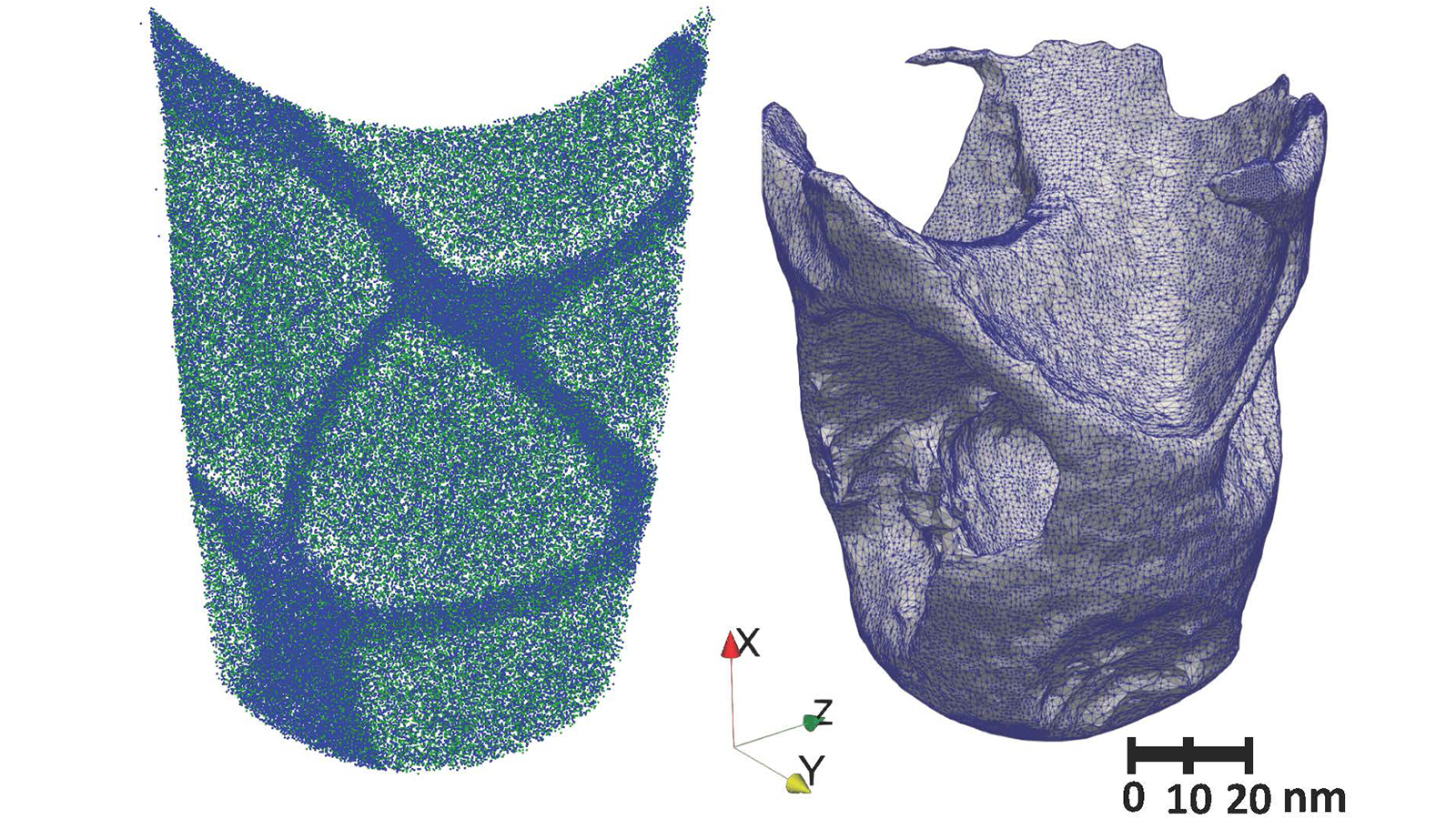 Three-dimensional point cloud reconstruction of an entire cobalt superalloy atom-probe tomography specimen (left) and the resulting interface from the edge detection method (right). Image by Argonne National Laboratory.)