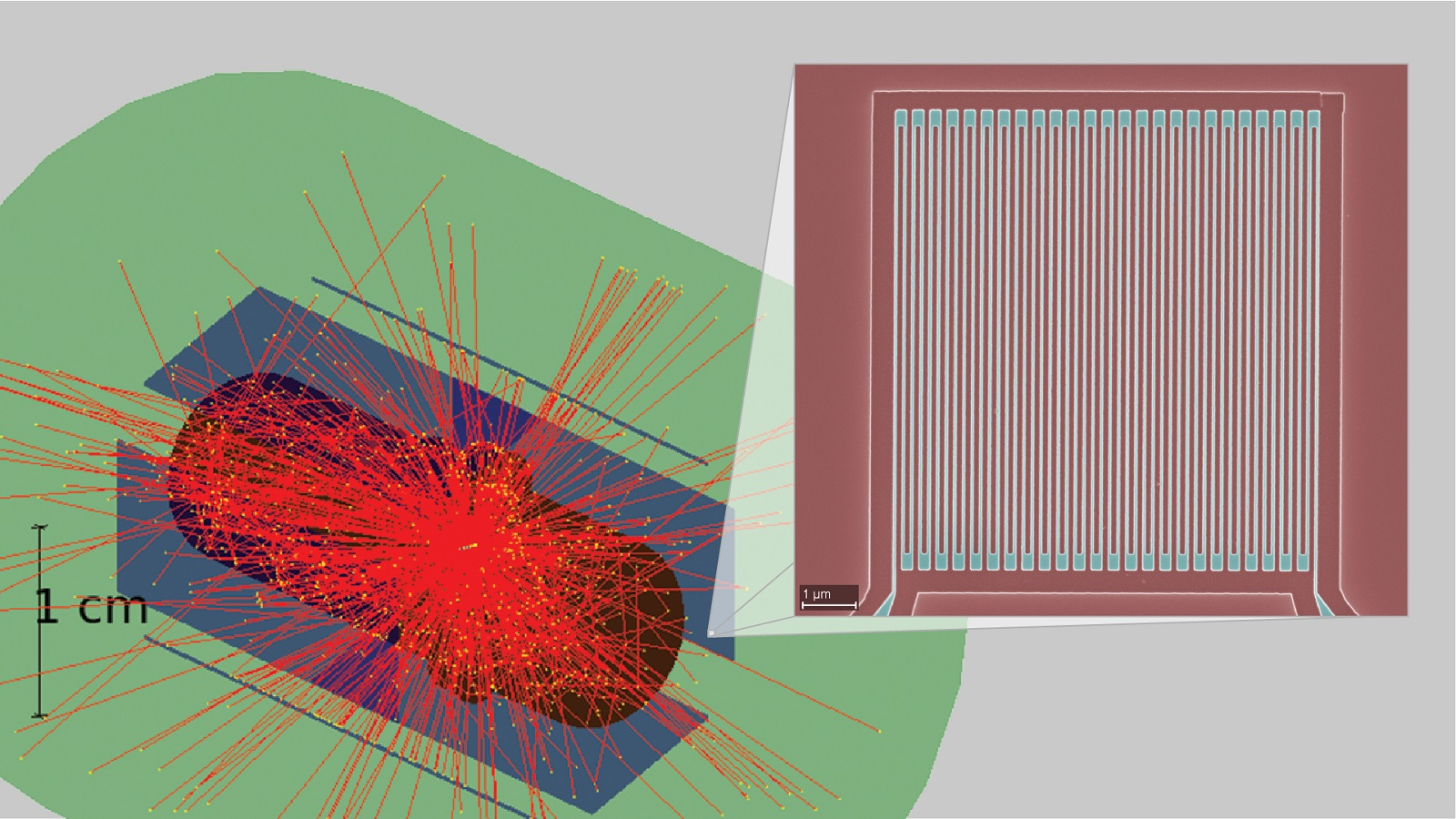 Simulation of high-speed superconducting nanowire detectors to be used in nuclear physics experiments. Green: cryogenic environment (near absolute zero) of experiment; purple: detectors; red, photons emitted from solid ammonia target at center. Inset: one of the Argonne devices in the detectors (scale bar, 1 µm).