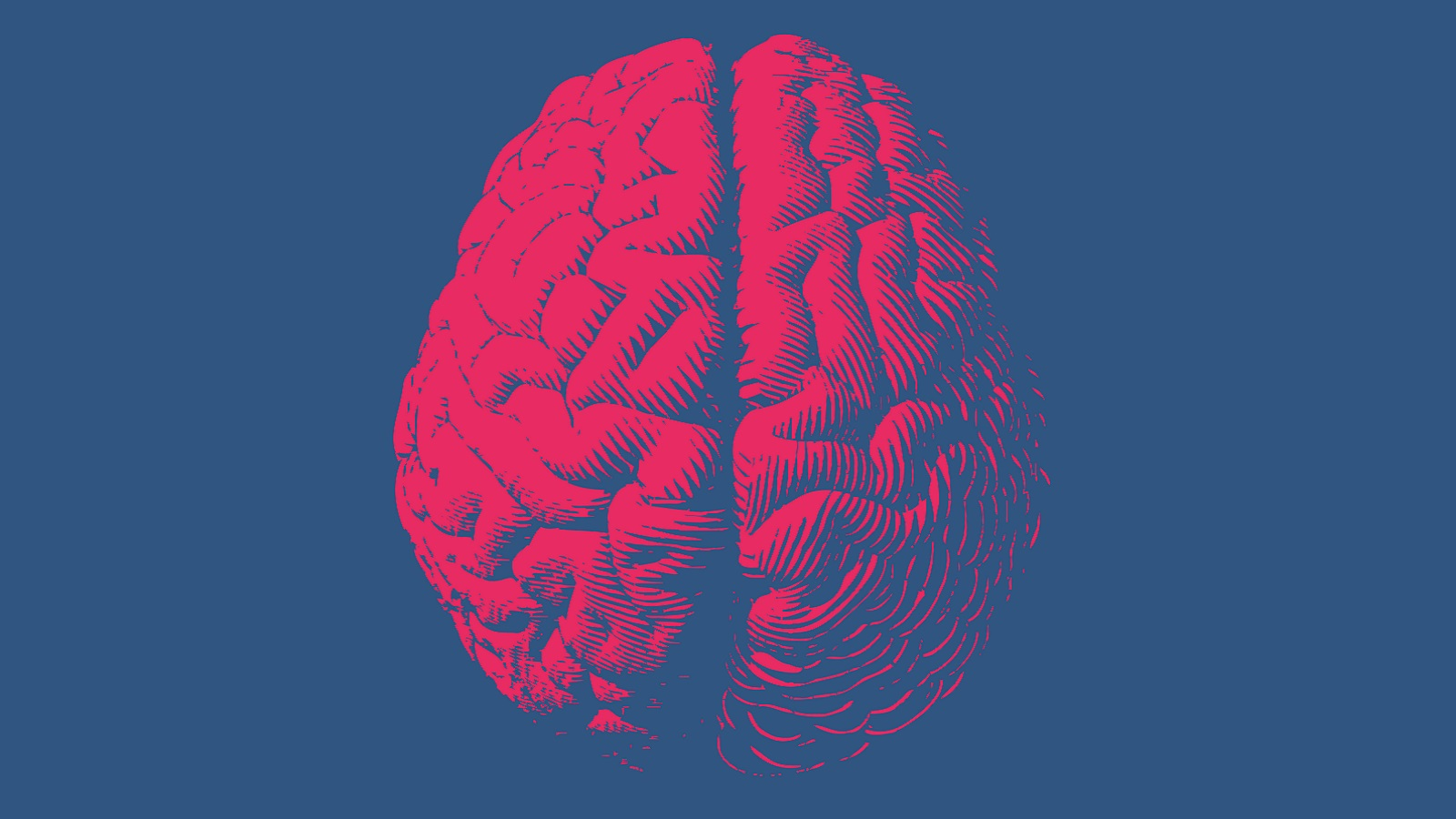 A new glutamate-sensing material could lead to new insights into the workings of the human brain. (Image by Shutterstock / Jolygon.)