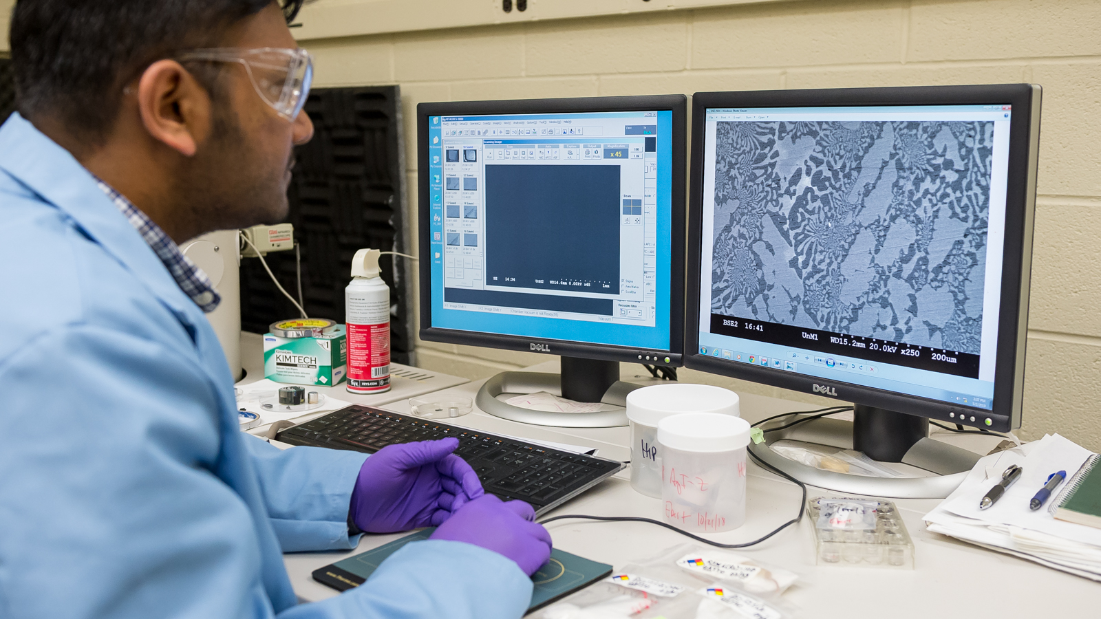 Photo of researcher looking at microscopy image on computer screen