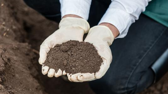 How can scientists use the revolutionary advances in sensors, sensor networks and related technologies to advance the understanding of soil? Researchers from Argonne and The University of Chicago began to answer this question at a recent workshop. (Image by Shutterstock / Vlad Teodor.)