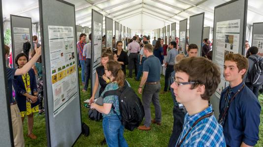 Argonne summer interns showcased their work at the end of the year Learning on the Lawn: Student Poster Symposium. (Image by Argonne National Laboratory.)