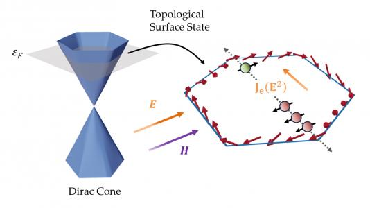 The specific relation between electronic states in a topological insulator and momentum leads to an asymmetric accumulation of spin, depicted on the right, which gives rise to an electric current to second order in an applied electric field E. (Image by Shulei Zhang / Argonne National Laboratory.)