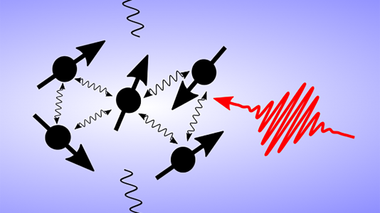 Cartoon of an open quantum system. Spins interact with each other but also lose information to the environment. A laser pulse provides control and processing of the information.