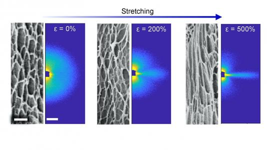 Researchers took microscopy images (black and white, left) of their new hydrogel and X-ray scattering data (in color, right) as it was stretched. The combination of techniques allowed scientists to fully characterize this durable yet flexible material.