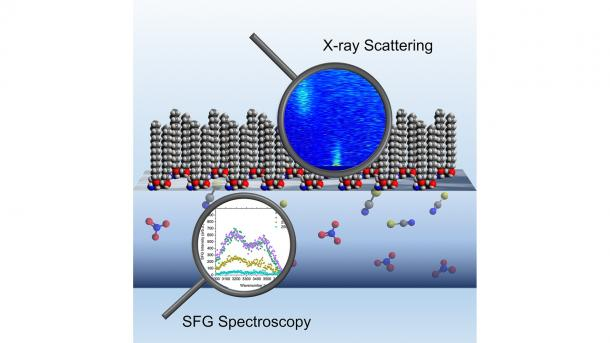 Scientists used X-ray scattering techniques (top) and sum frequency generation spectroscopy (bottom) to study the separation mechanisms at the interface of water and oil (depicted here) during extraction. (Image by Argonne National Laboratory.)